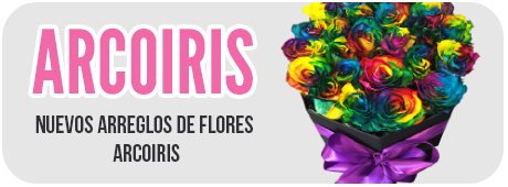 Flores Arcoiris