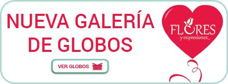 Nueva-Galeria