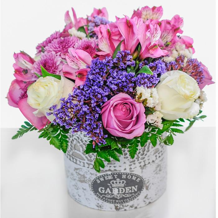 Flores Y Expresiones